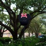 Polka Dot Disney