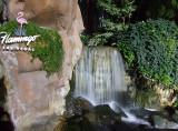 Flamingo Waterfall