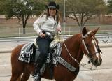 Fancy Saddle