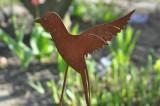 Rusty  the Bird