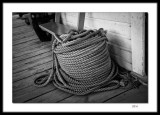 Give them enough rope..
