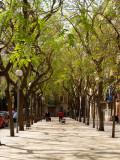 Spain, Mallorca 2011