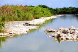 Everglades National Park, Tamiami Trail - National Scenic Byway, Florida