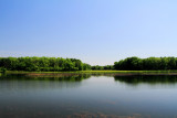 Busse Woods National Natural Landmark, Forest Department of Cook County, Schaumburg, IL