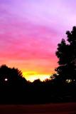 Sunset at Wellington Park, Palatine, IL