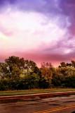 Rainfall or Rain + Fall , Palatine, IL
