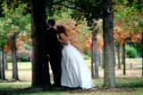 Wedding in Minneapolis Sculpture Garden