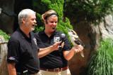 Cincinnati Zoo - Kookaburra