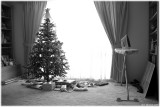 Christmas Domesticity