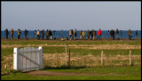 Birdwatchers on Udden - Ottenby