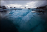 Floating ice near Smeerenburgbreen - Svalbard