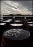 Ardbeg barrels