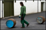 Ardbeg barrels just been filled and moved to the warehouse