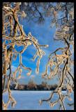 Winter in Karryd