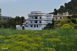 A house in Hill samahni
