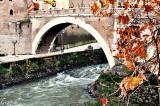 DSC_0493.P.ROME.jpg