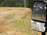 IMG_4946 In Oregon the little deer in the field
