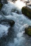 IMG_5401 Oregon water Fall