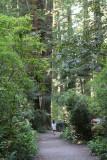 IMG_5370 A walk in the Lady Bird Johnson park
