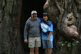 IMG_5341 In front of a redwood tree  **
