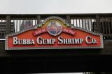 IMG_5320 Bubba Gump