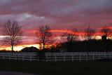 IMG_4615 Early skies