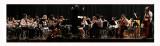CR2_4825 - CR2 _4827  - Vivaldi Orchestra