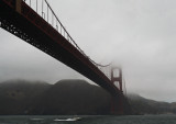 IMG_5242SF bridge