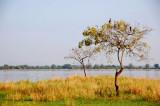 Parakrama Samudra Reservoir