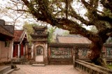 Den Dinh Tien Hoang