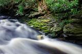 Sceneries & Nature