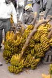 Market- What a lot of bananas