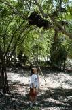 2004 Cait and Tulum termite nest 6356