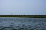 Sedge Islands