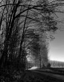 Last light..