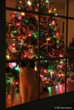 Waiting For Santa (27226)