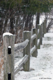 Split Rail Fence (27728)