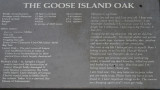 Goose Island Oak