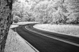 07/15/11 - Around the Bend (infrared)
