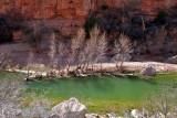 IMG_7091 Verde River.jpg