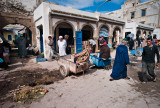 32-Morocco2©ALBERT_ENGELN.jpg