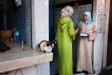 45-Morocco2©ALBERT_ENGELN.jpg