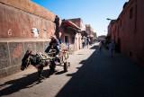 54-Morocco2©ALBERT_ENGELN.jpg