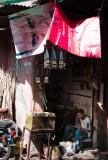 56-Morocco2©ALBERT_ENGELN.jpg