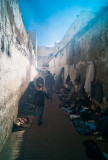 64-Morocco2©ALBERT_ENGELN.jpg