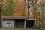 My Back Yard -36.jpg