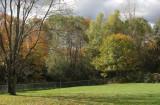 My Back Yard -38.jpg