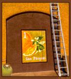 San Pasqual Oranges