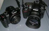 GALLERY: Panasonic GH2 versus Nikon D7000