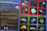 Know your jellyfish!